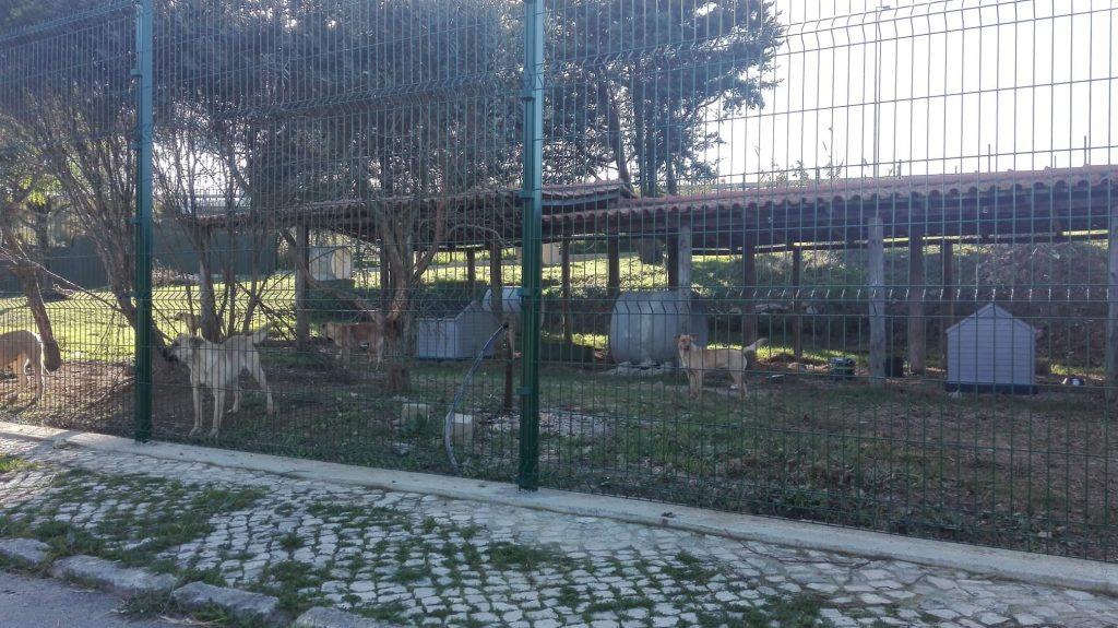 Exemplo de Parque Realojamento Matilhas de Sintra
