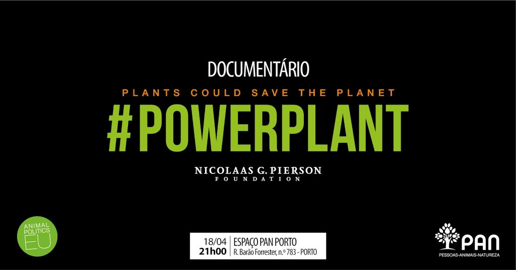 Imagem de divulgação do evento Powerplant