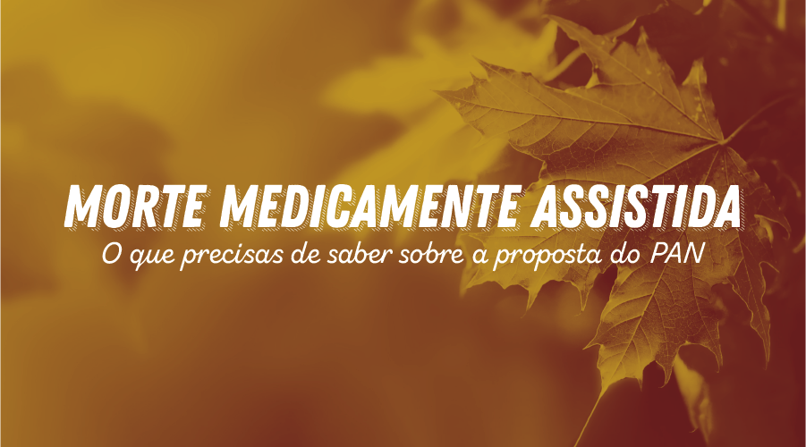 Na imagem estão folhas de árvores, com o texto Morte Medicamente Assistida: tudo o que precisas de saber sobre a proposta do PAN