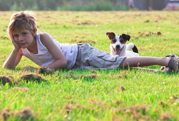 Cão e Criança