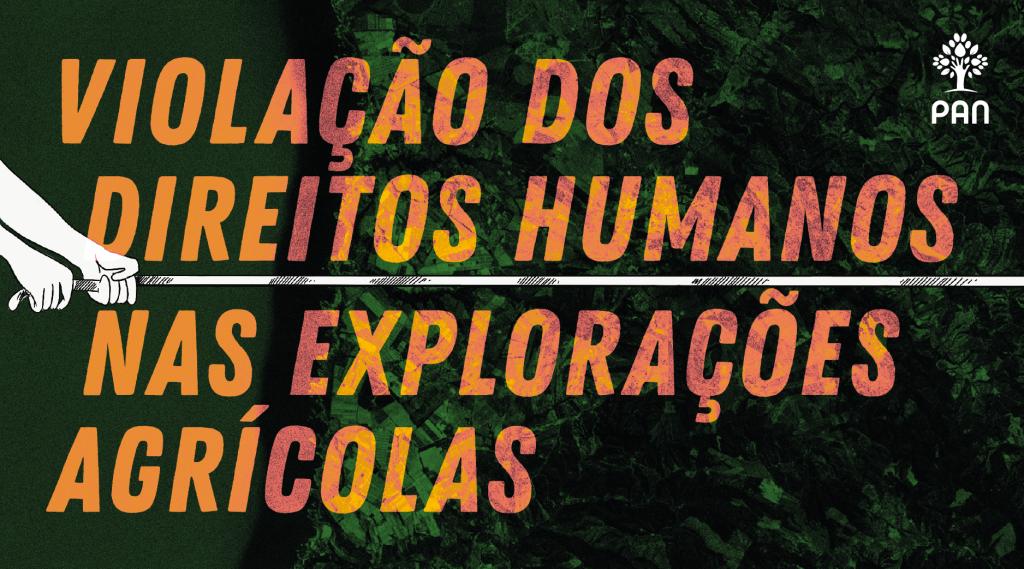 Campanha Exploração Laboral Odemira
