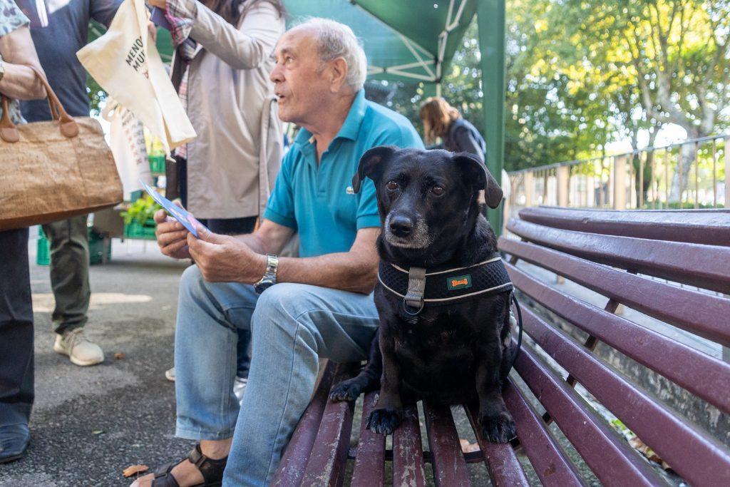 Cão e cidadão em Matosinhos, sentados num banco